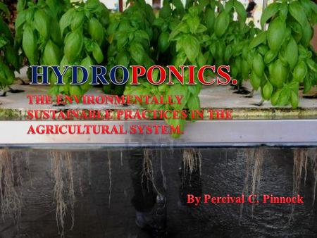  Hydroponics is a subset of hydroculture (the growing of plants in a soilless medium, or an aquatic based environment) and is a method of growing.