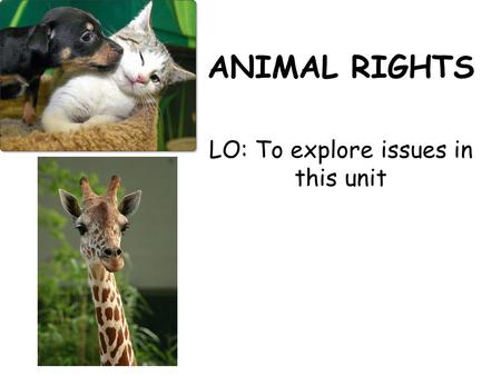 ANIMAL RIGHTS LO: To explore issues in this unit.
