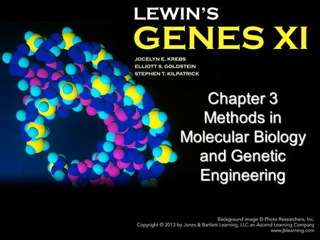 molecular biology and gene technology assignment Friday, september 27, 2013 molecular biology and gene technology assignment.
