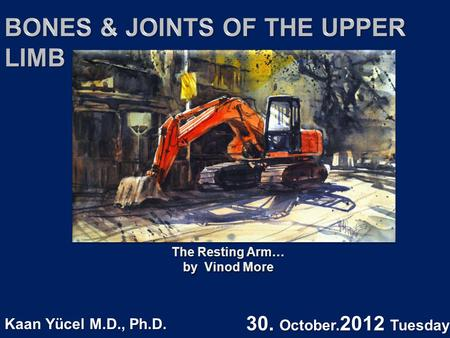 The Resting Arm… by Vinod More The Resting Arm… by Vinod More Kaan Yücel M.D., Ph.D. 30. October. 2012 Tuesday.
