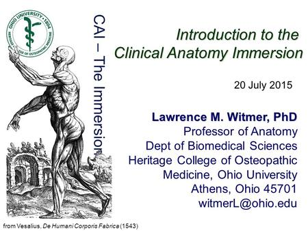 Introduction to the Clinical Anatomy Immersion Lawrence M. Witmer, PhD Professor of Anatomy Dept of Biomedical Sciences Heritage College of Osteopathic.