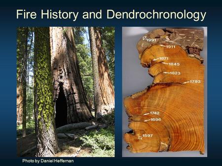 Fire History and Dendrochronology