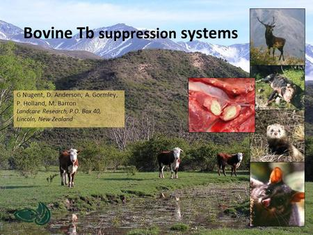 Bovine Tb suppression systems G Nugent, D. Anderson, A. Gormley, P. Holland, M. Barron Landcare Research, P.O. Box 40, Lincoln, New Zealand.