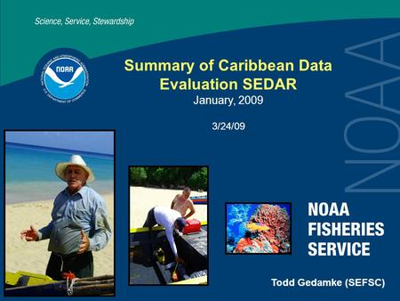Summary of Caribbean Data Evaluation SEDAR January, 2009 3/24/09 Todd Gedamke (SEFSC)