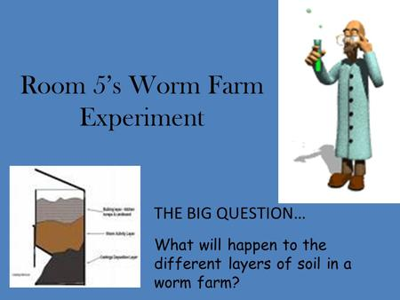 Room 5's Worm Farm Experiment THE BIG QUESTION… What will happen to the different layers of soil in a worm farm?
