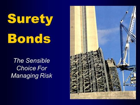 Surety Bonds The Sensible Choice For Managing Risk.