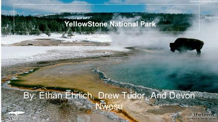 YellowStone National Park By: Ethan Ehrlich, Drew Tudor, And Devon Nwosu.