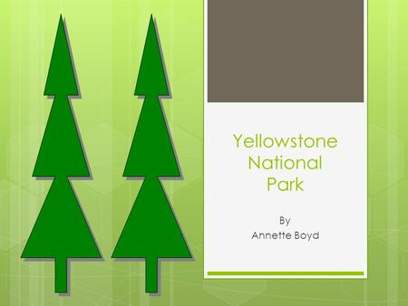 Yellowstone National Park By Annette Boyd Table of Contents 1. The worlds First National Park 2. Where is it located? 3. What is there to do in Yellowstone?