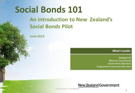 Social Bonds 101 An introduction to New Zealand's Social Bonds Pilot June 2015 1 Background What are Social Bonds Government objectives Programme Process.