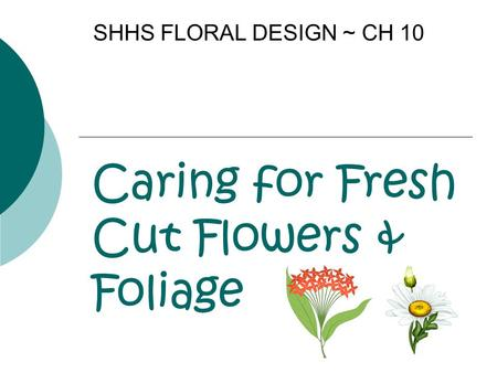 Caring for Fresh Cut Flowers & Foliage SHHS FLORAL DESIGN ~ CH 10.