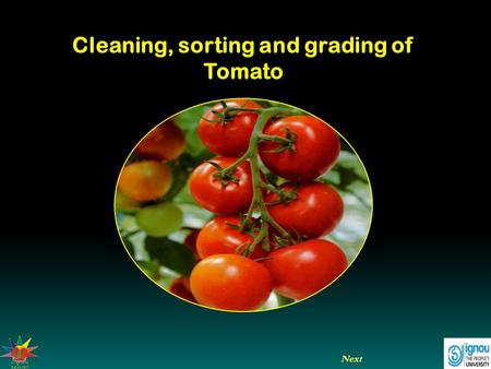 Cleaning, sorting and grading of Tomato Next. Cleaning, sorting and grading of Tomato Introduction  Cleaning.