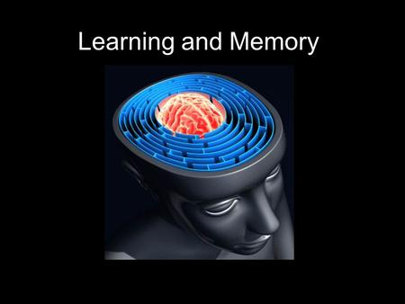 Learning and Memory. Learning relatively permanent change in behavior as a function of training, practice or experience excludes behavioral changes resulting.