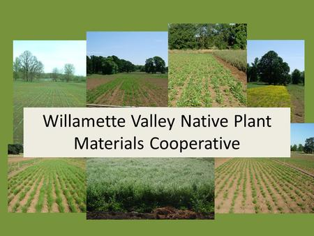 Willamette Valley Native Plant Materials Cooperative.
