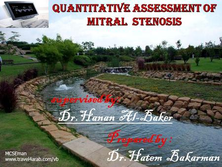 Quantitative Assessment of