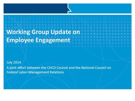 Working Group Update on Employee Engagement July 2014 A joint effort between the CHCO Council and the National Council on Federal Labor-Management Relations.