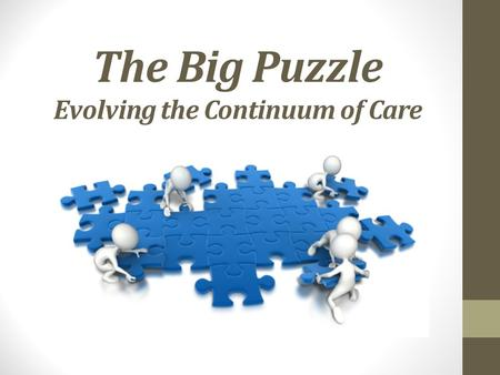 The Big Puzzle Evolving the Continuum of Care. Agenda Goal Pre Acute Care Intra Hospital Care Post Hospital Care Grading the Value of Post Acute Providers.