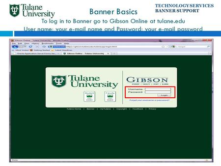 Banner Basics To log in to Banner go to Gibson Online at tulane.edu User name: your e-mail name and Password: your e-mail password TECHNOLOGY SERVICES.