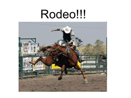 Rodeo!!!. CowboyCowgirl Calf – a baby cow (100-350 pounds) Gallop – a horse running at top speed.