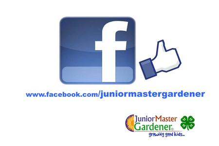 Www.facebook.com /juniormastergardener.  2012 Sept JMG State Coordinator Updates Building a Vegetable Garden Certification Growums Fundraiser JMG Online.