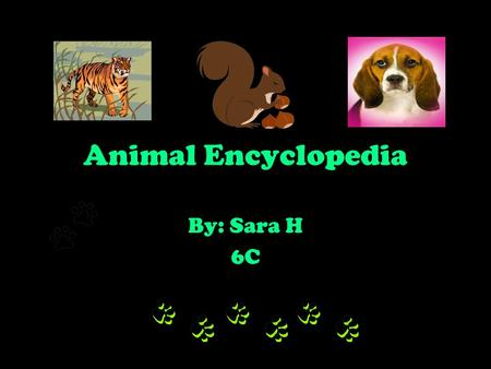 Animal Encyclopedia By: Sara H 6C.