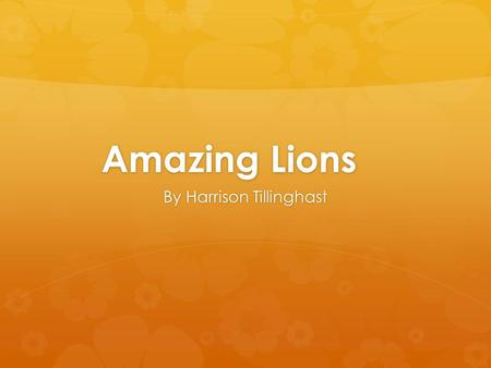 Amazing Lions By Harrison Tillinghast. Introduction  I run past the tall Savannah grass. The sun shines on my fur. I am a lion and this is my book. And.