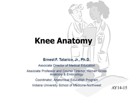 Knee Anatomy Ernest F. Talarico, Jr., Ph.D. Associate Director of Medical Education Associate Professor and Course Director, Human Gross Anatomy & Embryology.