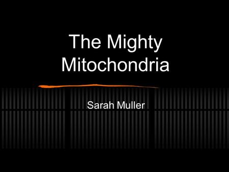 The Mighty Mitochondria Sarah Muller. Illustrations