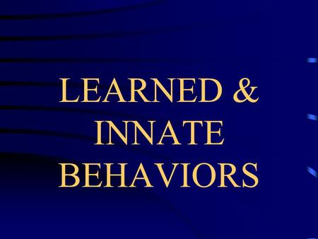 LEARNED & INNATE BEHAVIORS BEHAVIOR STIMULUS- Something in the environment to which an organism will respond.