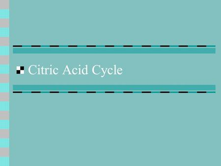 Citric Acid Cycle. General Considerations What is the importance of citric acid cycle? final common pathway for oxidation of fuel molecules provides intermediates.