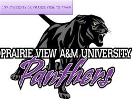 100 University Dr. Prairie View, TX 77446. DISTANCE FROM HOME It takes 3 hours and 17 minutes to travel from my house to Prairie View A&M. It takes 219.2.