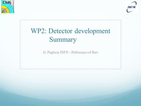 WP2: Detector development Summary G. Pugliese INFN - Politecnico of Bari.