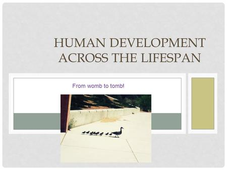chapter 11 human development across the Low and medium human development countries lose respectively 31 and 25 percent of their human development level from inequality, while for very high human development countries, the average loss is 11 percent.