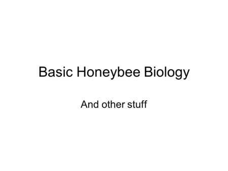 Basic Honeybee Biology And other stuff. PhylumArthropodExternal Skeleton, Chitinous, Segmented, Invertebrates ClassInsecta Hexapoda Six legged 3 major.