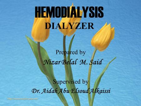 Nizar Belal M Said HEMODIALYSIS DIALYZER Prepared by Nizar Belal M. Said Supervised by Dr. Aidah Abu Elsoud Alkaissi.