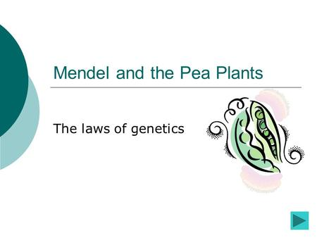 Mendel and the Pea Plants The laws of genetics. Introduction to the lesson While you are working through this lesson you will see many different buttons.