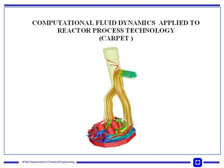 NTNU Department of Chemical Engineering. Acronym for CFD Applied to Reactor ProcEss Technology Program duration : from 2001 through 2004 Total budget.
