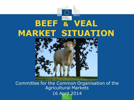 BEEF & VEAL MARKET SITUATION Committee for the Common Organisation of the Agricultural Markets 16 April 2014.