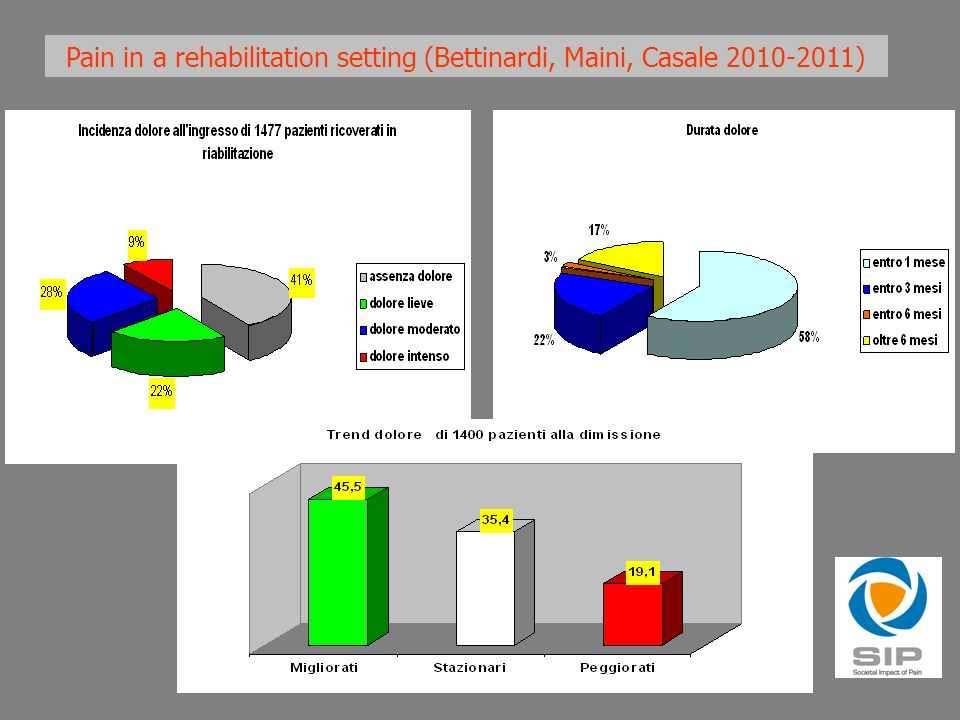 Chronic Disabling Pain: A Scotoma in the Eye of both Pain Medicine and Rehabilitation in Europe Casale R, Negrini S, Franceschini M, Michail X.