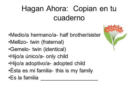 Hagan Ahora: Copian en tu cuaderno Medio/a hermano/a- half brother/sister Mellizo- twin (fraternal) Gemelo- twin (identical) Hijo/a único/a- only child.
