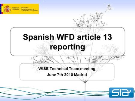 Spanish WFD article 13 reporting WISE Technical Team meeting June 7th 2010 Madrid.