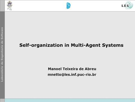 Self-organization in Multi-Agent Systems Manoel Teixeira de Abreu