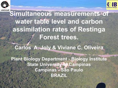Simultaneous measurements of water table level and carbon assimilation rates of Restinga Forest trees. Carlos A. Joly & Viviane C. Oliveira Plant Biology.