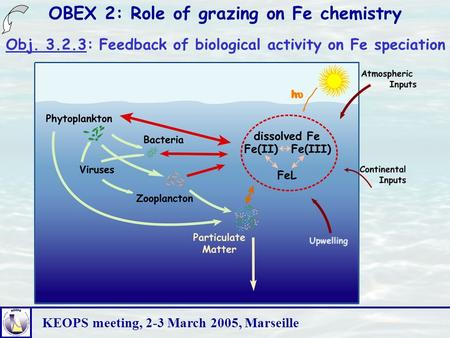 KEOPS meeting, 2-3 March 2005, Marseille OBEX 2: Role of grazing on Fe chemistry Obj. 3.2.3: Feedback of biological activity on Fe speciation.