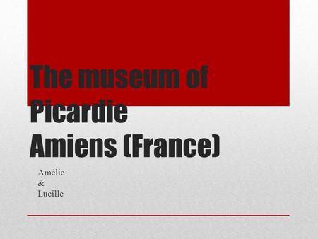 The museum of Picardie Amiens (France) Amélie & Lucille.