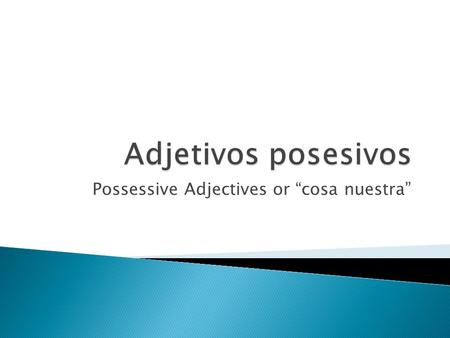 "Possessive Adjectives or ""cosa nuestra"".  SingularPluralEnglish  MiMisMy  TuTusYour  SuSusYour (Usted)  SuSusHis/Her  Nuestro (a)Nuestros (as)Our."