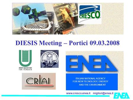 ITALIAN NATIONAL AGENCY FOR NEW TECNOLOGY, ENERGY AND THE ENVIRONMENT DIESIS Meeting – Portici 09.03.2008.