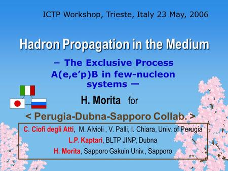Hadron Propagation in the Medium ICTP Workshop, Trieste, Italy 23 May, 2006 The Exclusive Process A(e,ep)B in few-nucleon systems H. Morita for C. Ciofi.
