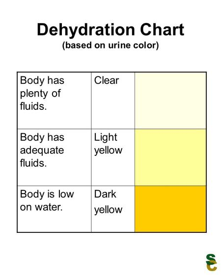 Dehydration Chart (based on urine color) Body has plenty of fluids. Clear Body has adequate fluids. Light yellow Body is low on water. Dark yellow.