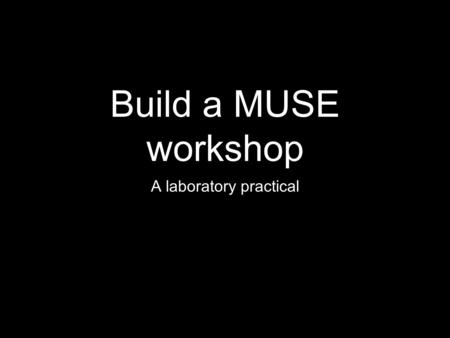 Build a MUSE workshop A laboratory practical. I. Create Identify Niche Market that is affordably reachable Brainstorm Products (not invest in products)