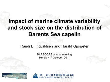 Impact of marine climate variability and stock size on the distribution of Barents Sea capelin Randi B. Ingvaldsen and Harald Gjøsæter BARECORE annual.